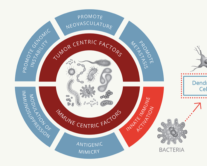 Development and Investment Landscape in the Microbiome